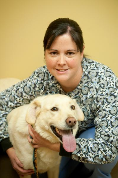 Wallaceburg Animal Hospital - Photo 9