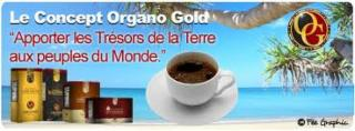 Organo Gold Nath - Photo 4