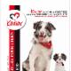 Kaviar International Inc - Pet Grooming, Clipping, & Washing - 450-346-8220