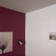 Tim's Affordable Painting - Peintres - 613-784-9421