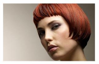 Coiffure animal crossing new leaf noeud papillon tarif - Ouvrir un salon de coiffure sans diplome ...