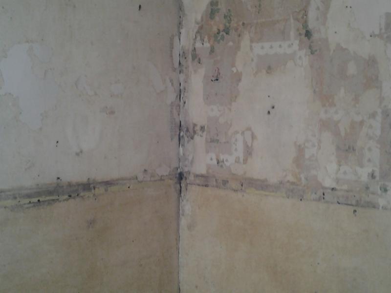 Roof to Basement Improvements - Photo 2