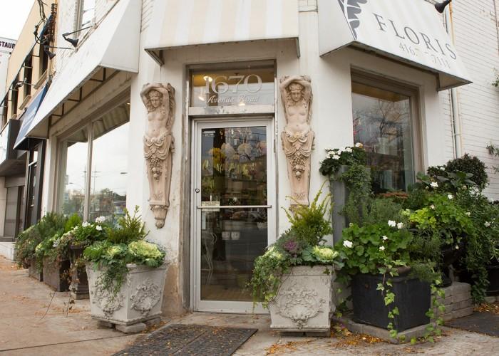Floris - Photo 4