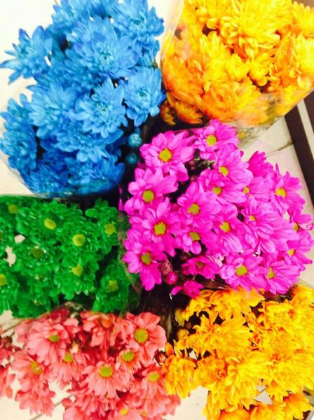 Petals By S & A Inc - Photo 4