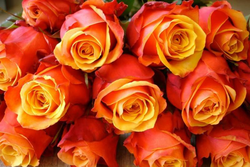 Petals By S & A Inc - Photo 6