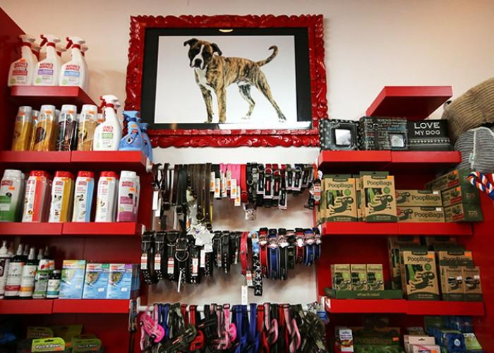 The Dogfather Pet Supplies Dog Grooming