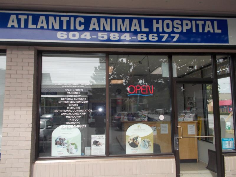 Atlantic Animal Hospital - Photo 1