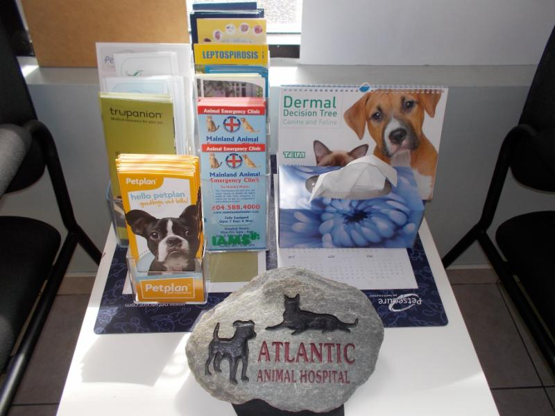 Atlantic Animal Hospital - Photo 3