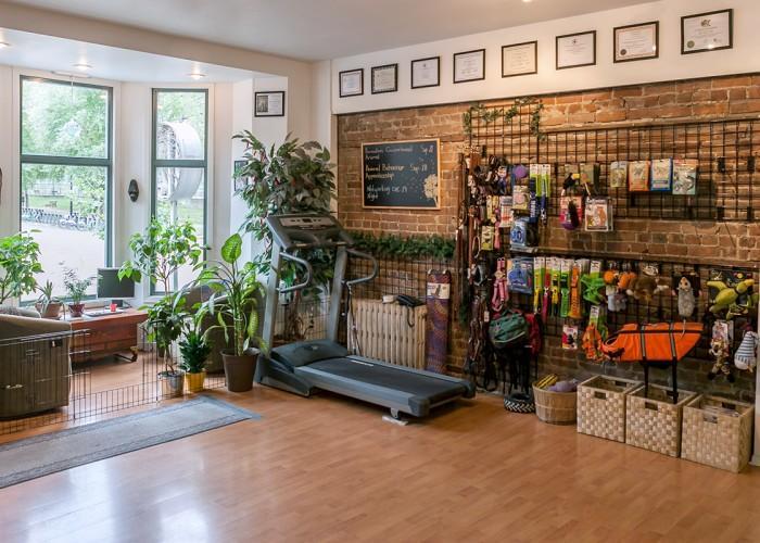 Dogue Shop - Photo 2