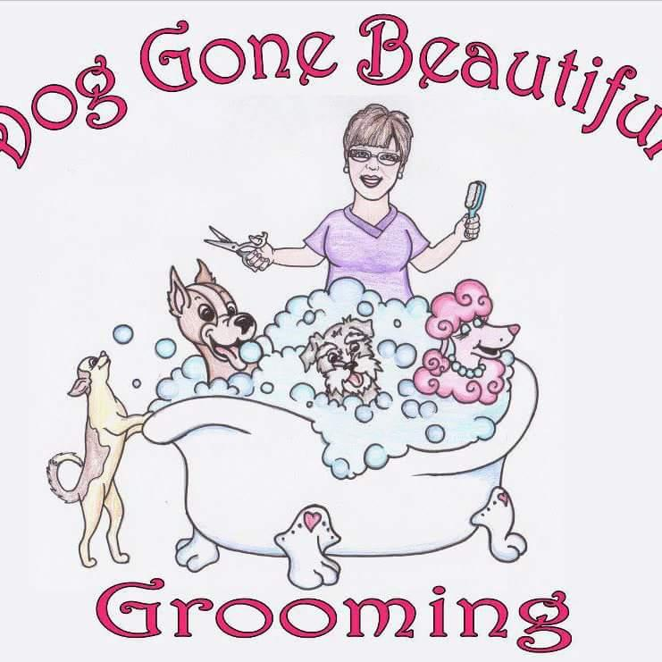 Dog Gone Beautiful Grooming Langley Bc