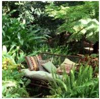 Chuck's Garden Centre - Photo 6