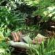 Chuck's Garden Centre - Centres du jardin - 204-334-5119