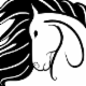 Horsen'Around - Selles, harnais et accessoires pour chevaux - 403-356-0166