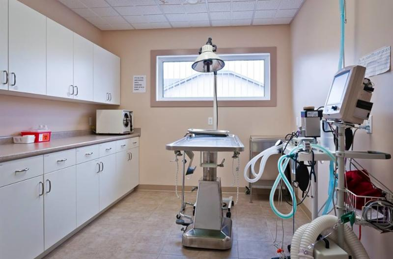 Surgical Suite. This is where all of the major surgeries are performed. We have anesthetic monitoring equipment that monitors our patient's heart rate through an ECG (electrocardiogram), respiratory rate, temperature, blood pressure, and oxygen level - Warman Veterinary Clinic
