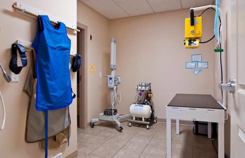 Radiology is where all the radiographs (also known as x-rays) are taken. Special protective lead aprons and thyroid covers are required to be worn by anyone taking radiographs. - Warman Veterinary Clinic