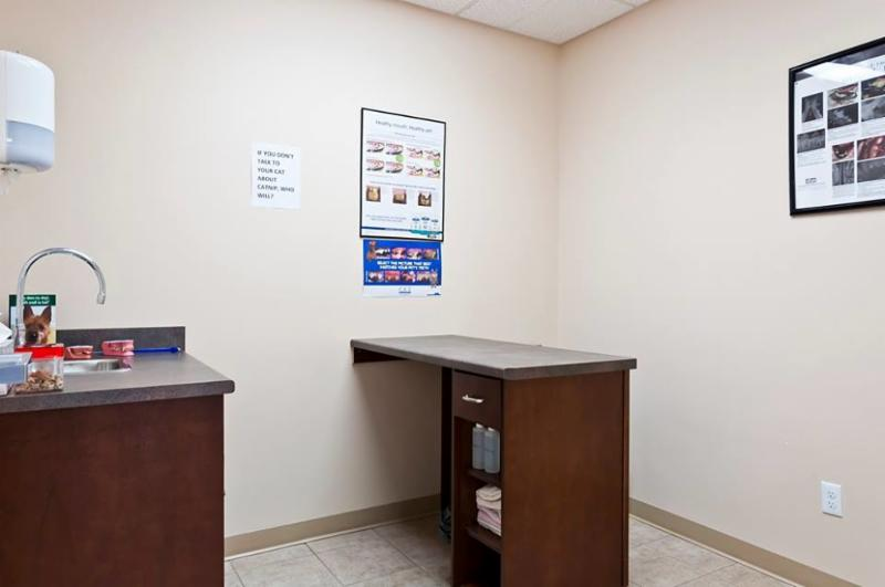Exam Room 1, used mainly for discharging patients after any procedure. - Warman Veterinary Clinic
