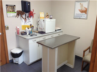 Newmarket Animal Hospital - Photo 7