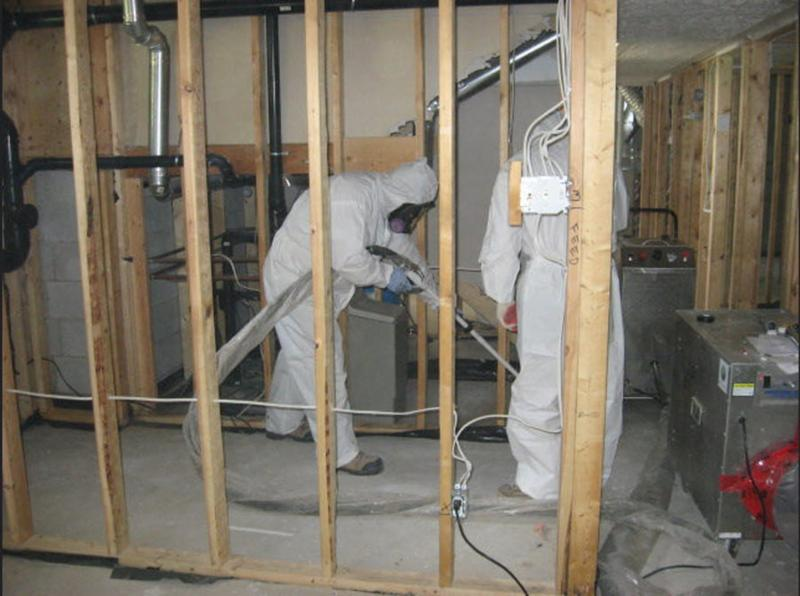 Ontario Mould Specialists Ltd - Photo 8