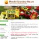 Marché Grandeur Nature - Épiceries - 819-585-2320