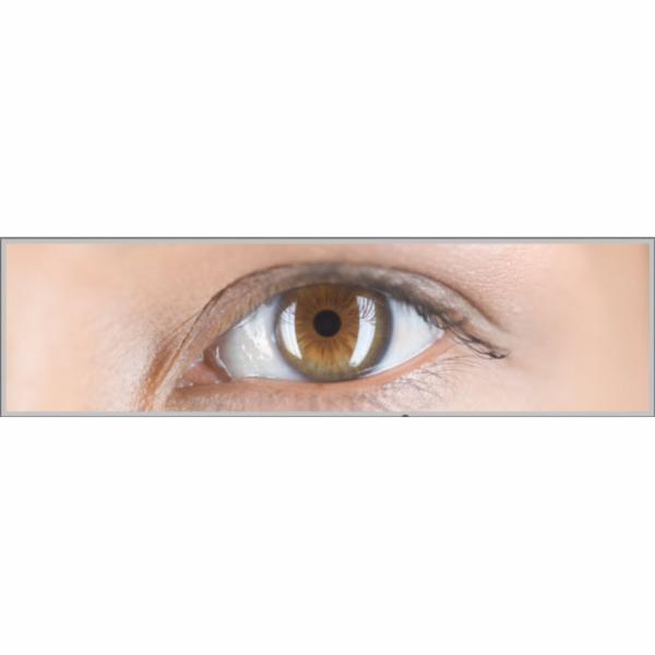 Optometrists Clinic Inc - Photo 3