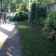 Walsh Property Service - Garden Centres - 416-561-7322