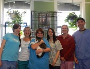 King Animal Clinic - Photo 5