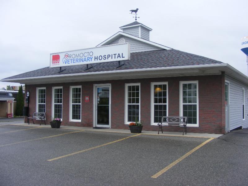 Oromocto Veterinary Hospital - Photo 1