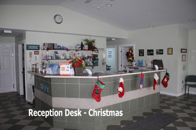 Oromocto Veterinary Hospital - Photo 2