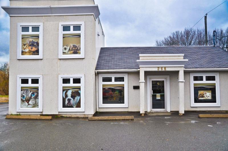 Clinique Vétérinaire Demers (Lemyre Inc) - Photo 2