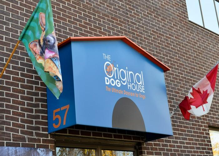 The Original Doghouse Inc - Photo 4