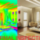 Stinger Home Inspections - Inspection de maisons - 604-812-7760