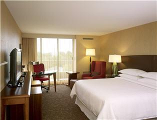 Sheraton Hotel - Photo 2