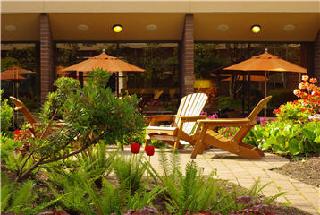 Sheraton Hotel - Photo 8