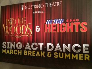 No Strings Theatre - Photo 1