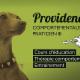 Providence Comportement Canin - Dressage et éducation d'animaux de compagnie - 438-822-2115