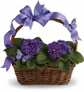 Passmore's Flowers - Photo 1