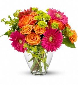 Passmore's Flowers - Photo 8