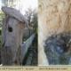 Lance Lane: Gardens, Habitats, Landscapes - Landscape Contractors & Designers - 705-686-3266