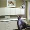 Clinique Dentaire Christine Brunet &Carole Pomplun - Dentistes - 450-433-9440