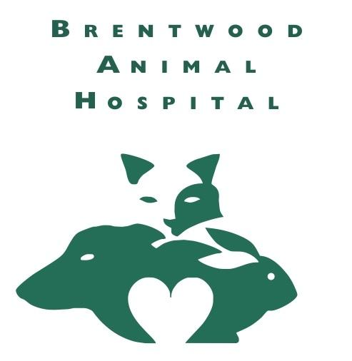 Brentwood Animal Hospital - Photo 1