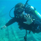 Aquasub Scuba Diving Centre - Diving Lessons & Equipment - 905-883-3483
