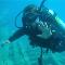 Aquasub Scuba Diving Centre - Diving Lessons & Equipment - 905-883-3483