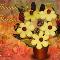 Newfoundland Blossoms - Gift Baskets - 709-237-8222