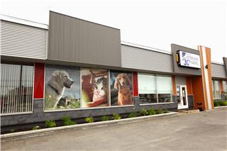 Clinique Vétérinaire Hamel - Photo 2
