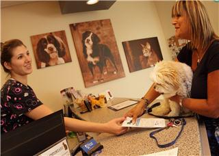 Clinique Vétérinaire Hamel - Photo 11