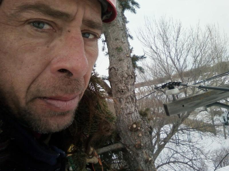 Treewise.ca - Photo 6