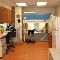 Repromed Ltd - Medical Clinics - 416-233-8111