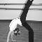 Encore Studios - Dance Lessons - 204-235-0879