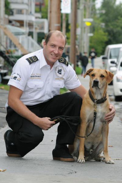Ecole De Dressage Brigade Canine - Photo 6