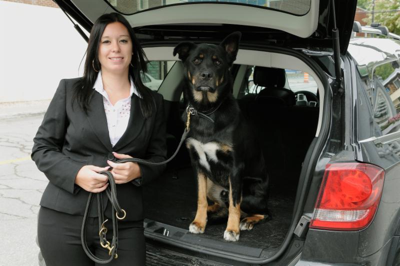 Ecole De Dressage Brigade Canine - Photo 7